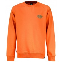 SWEAT DICKIES briggsville energy orange
