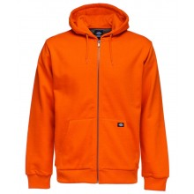 SWEAT DICKIES KINGSLEY orange